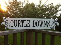 TURTLE DOWNS