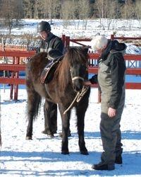 Utrustas med sadel och svanskappa