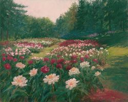 Valley of the Peonies