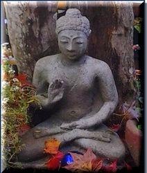 Backyard Buddha 2013