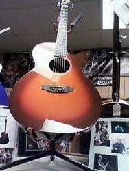 Rainsong Hybrid Guitar