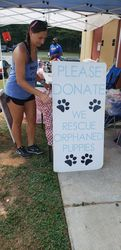 Animal Recuse Volunteers are Hero's!