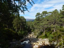 View in Balmoral