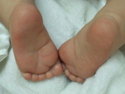 Pink little toesies