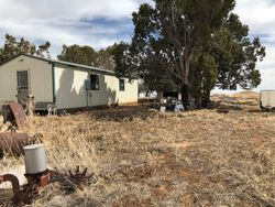 Bunkhouse on top of the Hill