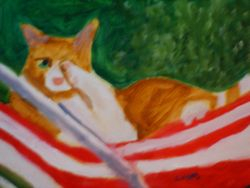Cat on a Hammock
