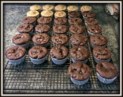 Cupcakes cooling....