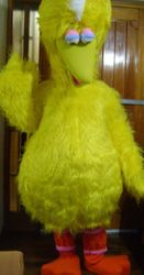 BIG BIRD (PLAZA SESAMO)