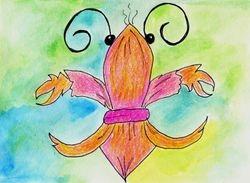 Shrimp de Lis