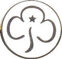 Current Young Leader Promise Badge