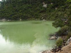 Lurid green lake