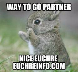 Way to go partner nice Euchre.