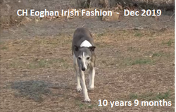 Morag 10 years 9 months old