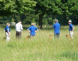 Inter Club Working Test 2013
