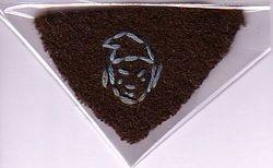 WWII Handmade Brownie Interest Badge (Jester)