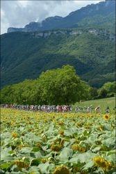 tour de france 2012 in de Alpen