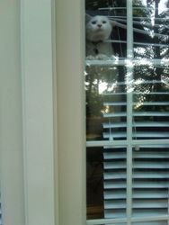 Tye hoping to sneak out.