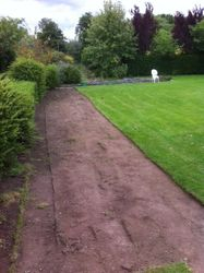 The long border after using the turf cutter