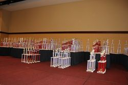 Now that's alot of trophies!