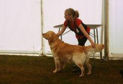 Minehead & District Dunster 2009 Junior Handling