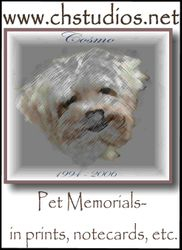 Exclusive Pet Portraits