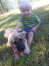 Sadie and his owner SAM