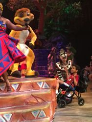 Meeting Zimba at the Lion King show