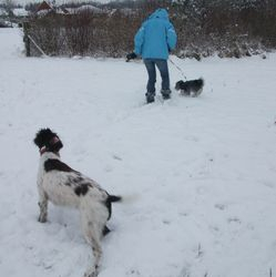 Off for a wander in the snow