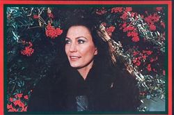 1976 Christmas Card