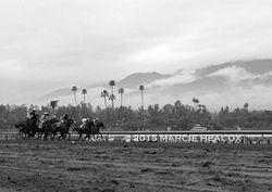 Cloudy San Antonio Stakes