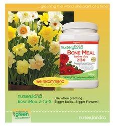 always use bonemeal when planting