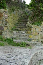 Ferienhaus Bretagne mit Hund 18