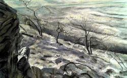 Ridge near Fowlers Gap