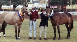 Perth Royal Centenary Show 1990