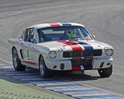 1965-1970 Shelby Mustang Cars