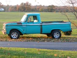 39.66 Ford f100
