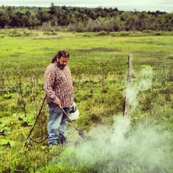Weed Control by fire!