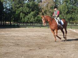Chris Beach riding her Level 3 test