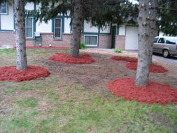 After - New Mulch