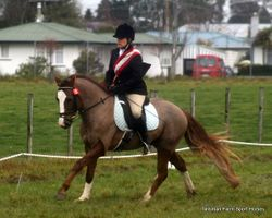 Solway Dressage Series - Final Day