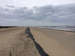 Reconstructed beach.