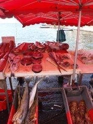 Fish market in Pointe a Pitre