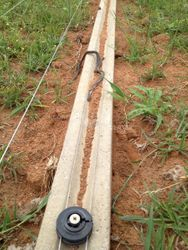 Snake Electric Fence getting a black mamba