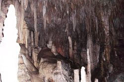 Inside the Mammoth Caves