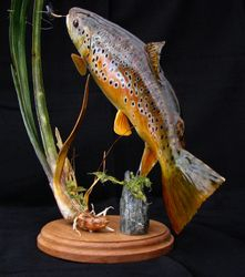 "16"" Brown trout pedestal"