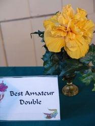 BEST AMATEUR DOUBLE - MANGO MOON - Ann Peltier, Lafayette, LA.