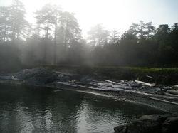 Fog on Discovery Island.