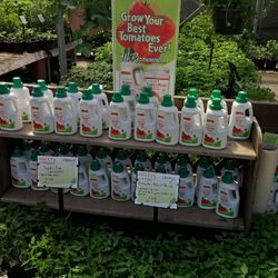 Grow Your Best Tomatoes this year!!