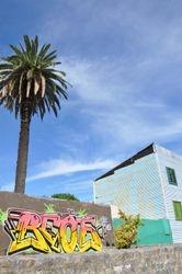 2.Graffe au palmier