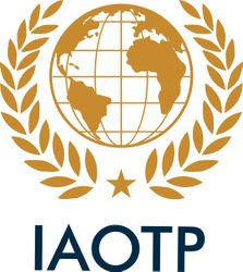 INTERNATIONAL ASSOCIATION OF TOP PROFESSIONALS AWARD